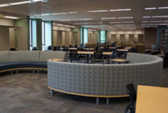 Quiet study zone on the third floor of the Science Library