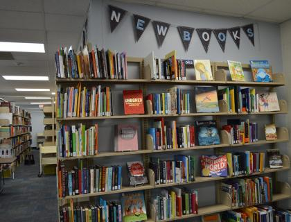 Display of new books at the Curriculum Materials Library
